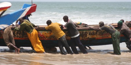 Kaps Skirrin, Senegal (2008)