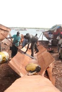 Elenkin, Senegal (2008)